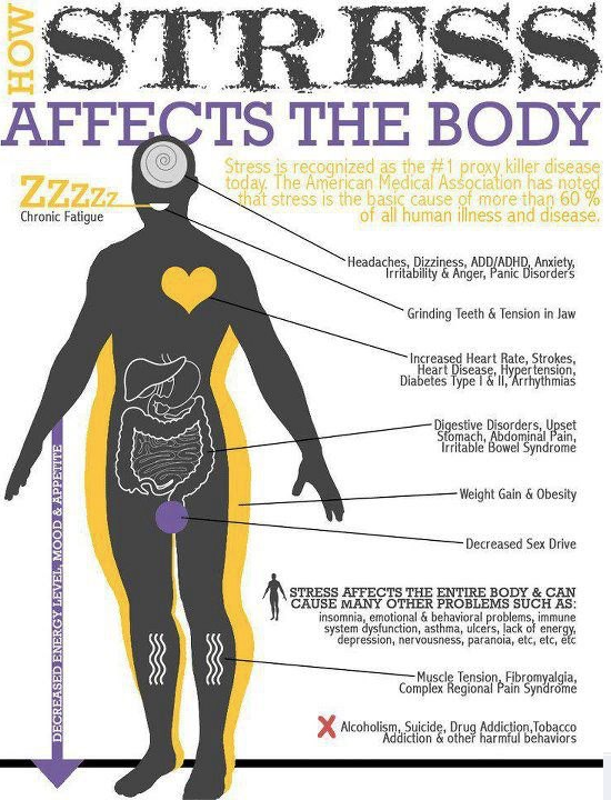 stress mybodystructure.com
