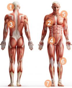 posture-image-mybodystructure.com